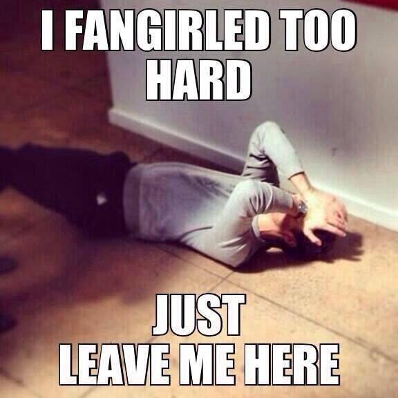 I fangirled too hard