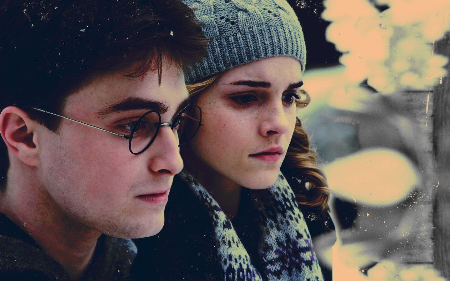 harry and hermione relationship wiki